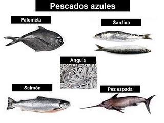 pescados-azules