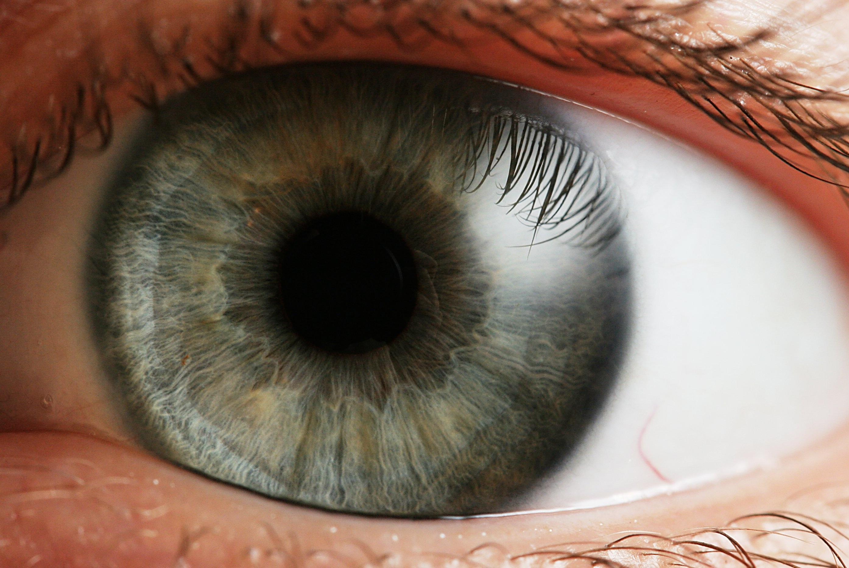 Problemas de retina derivados de la actividad deportiva