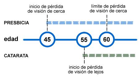 Evolución de la visión